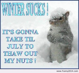 Hate Winter Quotes