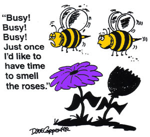 BUSY BEES, FRIDAY FUNNY