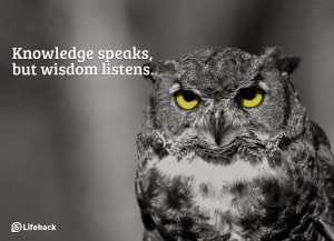 wisdom is the principle thing therefore get wisdom and with all thy ...