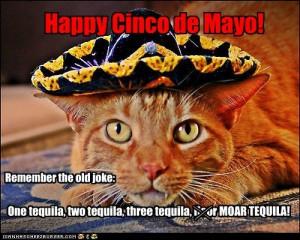 Happy Cinco De Mayo (8)