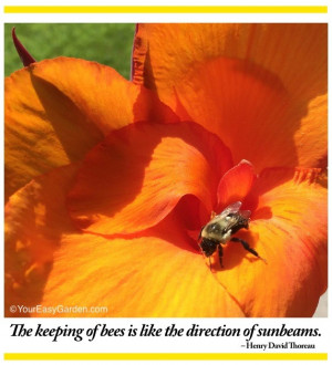 Great Nature and Gardening Quotes