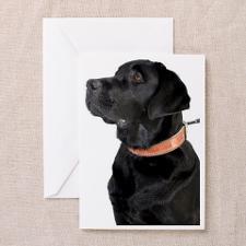 Black labrador. Greeting Card for