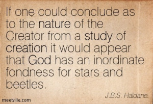 ... it would appear that God has a special fondness for stars and beetles