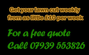 GARDEN SERVICES Grass Cutting Service Tidy Ups FREE QUOTE 5