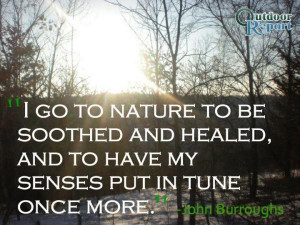 Healing quotes best deep sayings john burroughs