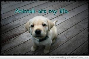 love-animals-love-quotes-quote-Favim.com-555008.jpg
