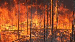 forest fire burns Friday about 270 kilometres north-northeast of ...