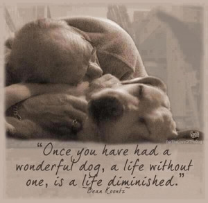 Once You Have Had A Wonderful Dog, A Life Without One, Is A Life ...