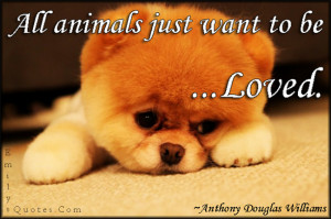 All animals just want to be loved.