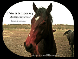 Horse Quotes Pinterest Lance armstrong quote