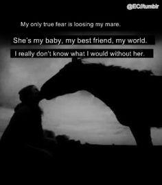 Equestrian Problems Quotes 17f2bfdb79c9e4e8a16650cb1617a ...