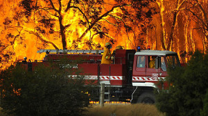 Horror and Tragedy in Australia's Worst Wildfires