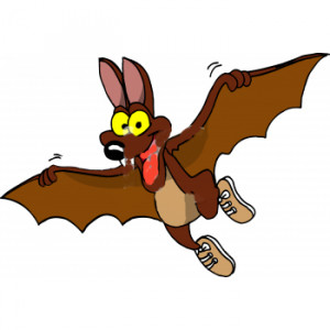 Funny Bats Photos
