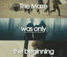 thomas, the maze runner, the scorch trials, newt, dylan o'brien