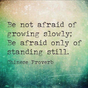 be not afraid of growing slowly; be afraid only of standing still