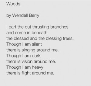 wendell berry more nature s trees s gardens written words wendell ...