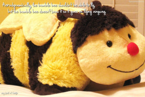 Aerodynamically The Bumblebee Shouldn't Be Able to Fly
