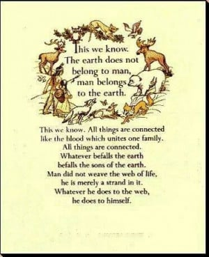 Native American Quotes, Energy Pin Quotes, Quotes Praying, Earth Call ...