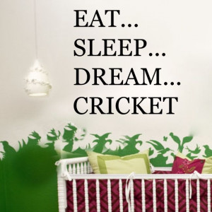 ... DREAM CRICKET sports player bedroom mens boys wall stickers quote