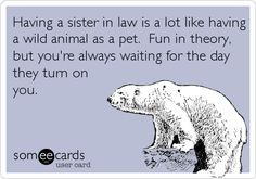Having a sister in law is a lot like having a wild animal as a pet ...
