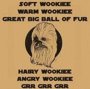 Soft Wookie (Big Bang Theory/Star Wars).
