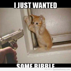 cat funny gun Quotes