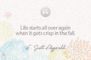scott fitzgerald quotes source http blog honest com tag fitzgerald ...