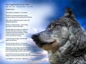 Inspirational Wolf Quotes Ruthlessly, the wolf is being