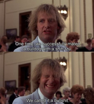 Dumb and Dumber Quotes About Bullshit