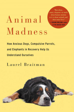 Animal Madness: How Deciphering Mental Illness in Our Fellow Beings ...