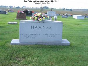 earl hamner jr death
