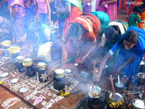 The festival of Pongal is held particularly by the farming community