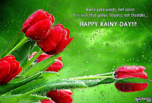 Funny rainy day sayings and quotes Wallpapers HD HD