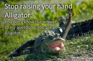 Stupid alligator