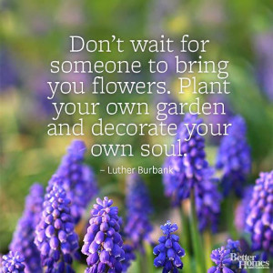 ... . Plant your own garden and decorate your own soul.