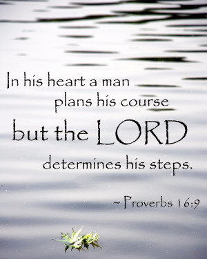 Let God determine your steps