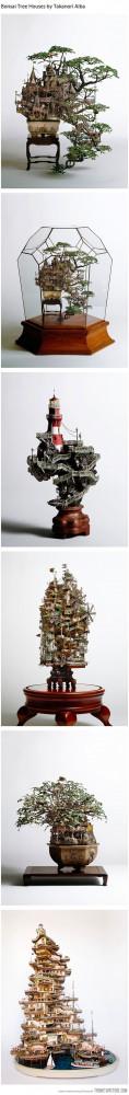 Funny photos funny Bonsai tree house art