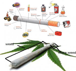 Cannabis Can Help Cigarette Smokers By Reducing Their Addiction to ...