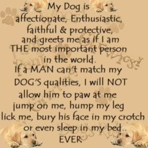 http://www.pics22.com/my-dog-is-affectionate-dog-quote-for-fb-share/
