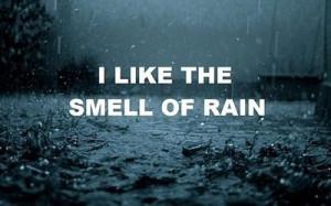 Lightningstix's Zingers: Rain Rain Go Away