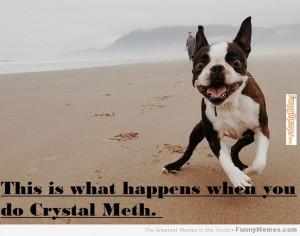 ... com http www funnymemes com funny memes when you do crystal meth