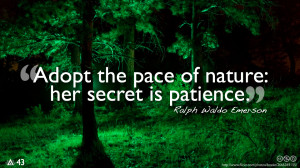 more quotes pictures under nature quotes html code for picture