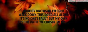 Nobody knows me I'm coldWalk Down This Road All AloneIt's no one's ...