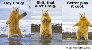 Funny dancing polar bear pic