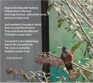 ... The Big Year , but how is poetry part of the birding world today