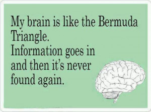 Funny ecards – My brain is like the bermuda triangle