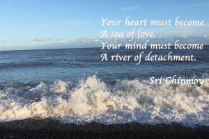 Your Heart Must Become a Sea of Love