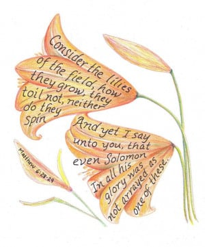 Consider the lilies drawing inspirational bible by LindaRobbsArt One ...