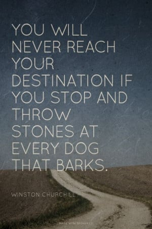 You will never reach your destination if you stop and throw stones at ...