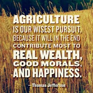 Thomas Jefferson - 'wisest pursuit'